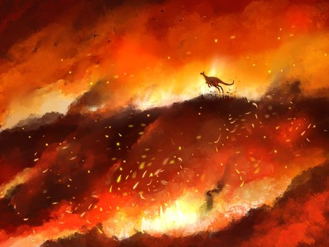 illustration kangaroo run away from wildfire part of  global warming