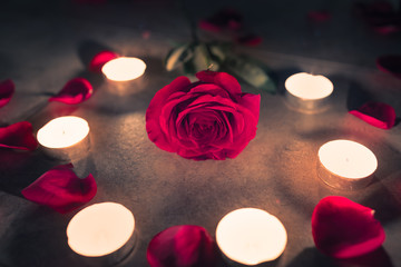 Wall Mural - Red rose surrounded by candle light. Romantic mood setting.