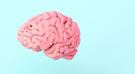 Fototapeta human brain on blue background