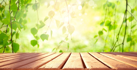 Photo sur Plexiglas Printemps Beautiful spring background with green juicy young foliage birch and empty wooden table in nature outdoor. Natural template with Beauty bokeh and sunlight.