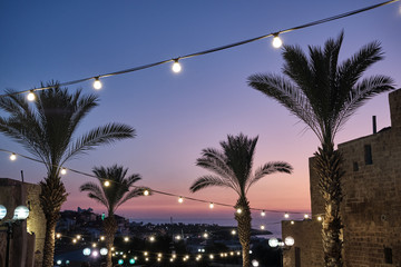 palm trees and lights at sunset in the Old Giaffa (Jaffa) in Tel Aviv, ISRAEL.