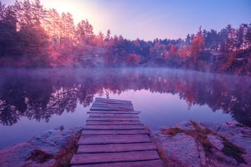 Papiers peints Prune Magical sunrise over the lake. Pine trees on the lakeshore. Serene lake in the early morning. Nature landscape