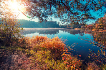 Foto op Plexiglas Zwart Early misty morning. Sunrise over the lake in autumn