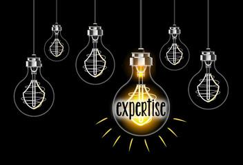 Concept d'expertise avec ampoule