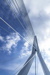 Photo sur Aluminium Ponts Erasmus bridge in Rotterdam