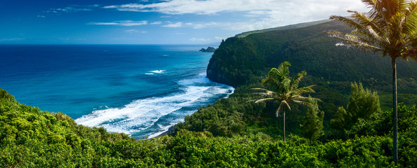 Wall Murals Island Panorama of the northern coast of the Big Island with steep green cliffs and blue Pacific Ocean, Hawaii
