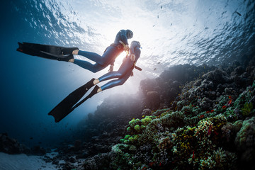 Wall Mural - Two freedivers swim over the vivid coral reef in a tropical sea during their recreational freedive session