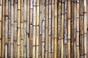 Poster Bambou bamboo fence texture background