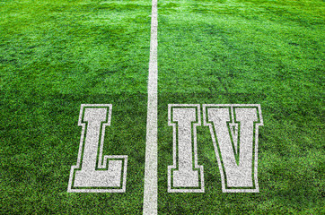 yard line on an american football field, symbolizing the big game 54 in 2020