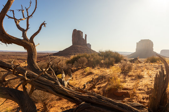 Einsame verlassene Landschafrt in der Wüste