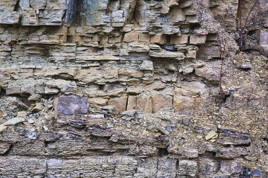 Shell limestone rocks in an old quarry