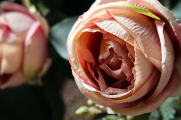 Fabric Pink Rose Flower
