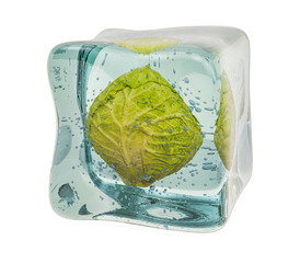 Cabbage frozen in ice cube, 3D rendering