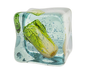 Chinese cabbage napa frozen in ice cube, 3D rendering