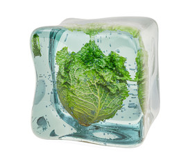 Savoy cabbage frozen in ice cube, 3D rendering