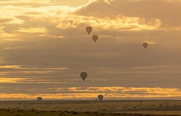 Wall Mural - Hot Air Balloons Floating at Golden Sunrise