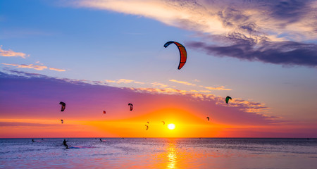 Kite-surfing against a beautiful sunset. Many silhouettes of kites in the sky. Travel concept. Artistic picture. Beauty world. Panorama