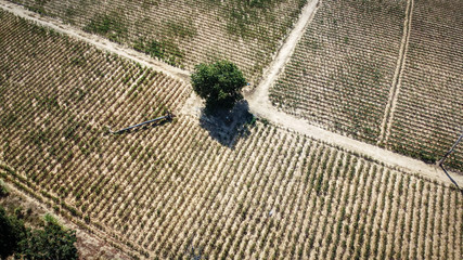 Aerial view, agricultural plot, drought conditions after harvesting season, Drone photography.