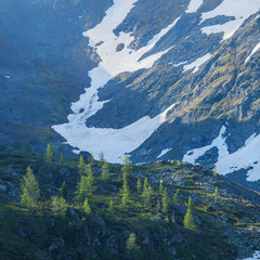Fototapete - Summer in the mountains, snow and greens