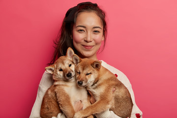 Pet lover and friendship with owner concept. Asian woman plays with two pedigree small dogs, enjoys...