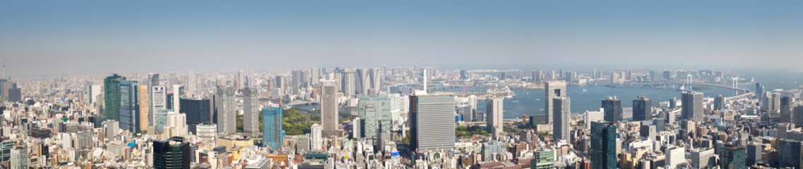 Canvas Print - panoramic view to the Tokyo, Japan from air