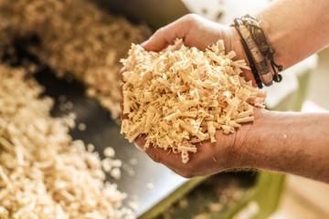 Wooden sawdust in carpenter hands. Saw dust details after hard wood work.