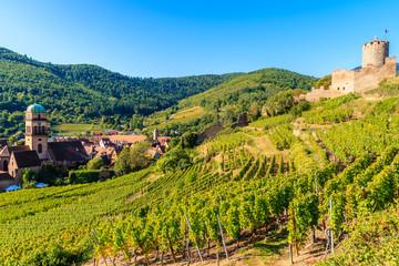 Medieval castle on hills among vineyards in Kaysersberg village on Alsatian Wine Route, France