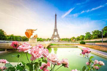 Acrylic Prints Eiffel Tower eiffel tour and from Trocadero, Paris