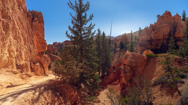 Einsamer Wanderpfad im Flussbett des Bryce Canyon in Amerika
