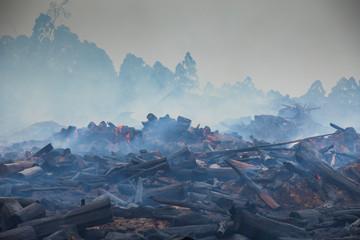 Fotobehang Bleke violet Bushfire smouldering in Australian Outback