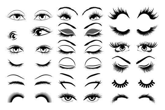 eyelashes vector set collection graphic clipart design