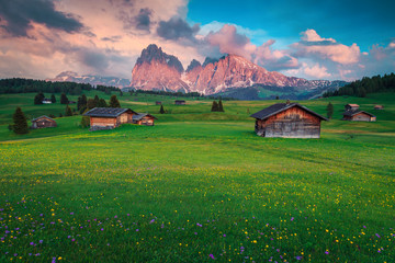 Wall Mural - Seiser Alm with Langkofel mountain group in background, Dolomites, Italy