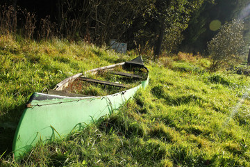 The old canoe is lying on the meadow close to the river and is abandoned, fully overgrown by grass and useless.  Wall mural