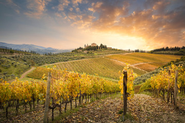 Sunset in Gaiole in Chianti with Chianti vineyards. Gaiole in Chianti, Tuscany, Italy.