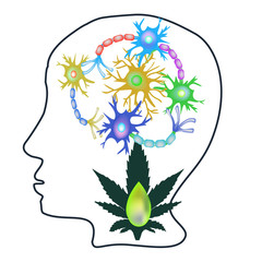 The effect of hemp seed oil on the central nervous system. Synapses of neurons. Neural communications background. Synapse communication neuron. Vector illustration on isolated background.