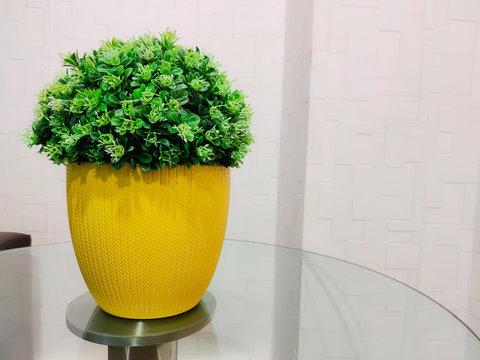 yellow vase with green plant on office desk