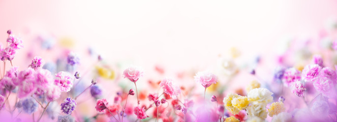 Foto op Canvas Bloemen Spring floral composition made of fresh colorful flowers on light pastel background. Festive flower concept with copy space.