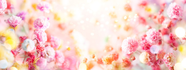 Wall Murals Floral Spring floral composition made of fresh colorful flowers on light pastel background. Festive flower concept with copy space.