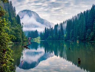 Stunning morning view of Lacu Rosu lake. Spectacular summer scene of Harghita County, Romania,...