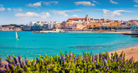 Poster Mediterraans Europa Coastal town in southern Italy's Apulia region - Otranto, Apulia region, Italy, europe. Splendid spring view of Alimini Beach. Traveling concept background.