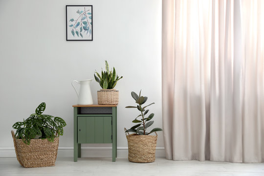 Different tropical plants in wicker pots near white wall at home
