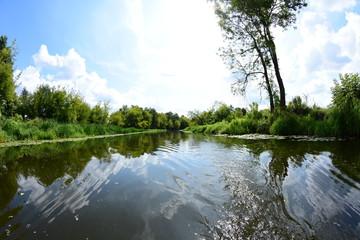 Wycieczka brzegiem rzeki wśród zielonych drzew i krzewów w letni pogodny dzień.