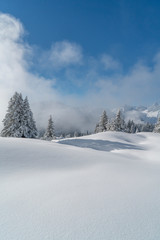 Fototapete - Neuschnee in den Bergen