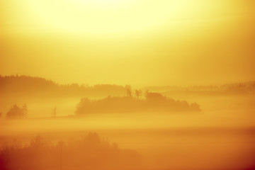 Canvas Prints Honey Sunset Field Fog Landscape. Foggy Forest Field Sunset