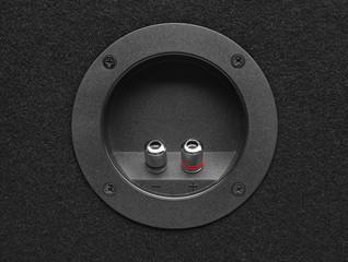 Subwoofer Speaker connectors
