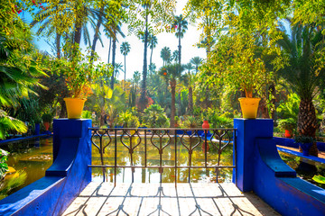 Papiers peints Maroc The beautiful Majorelle Garden is a botanical, tropical garden and artist's landscape garden in Marrakech, Morocco.