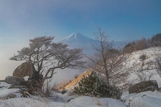 富士のある景色
