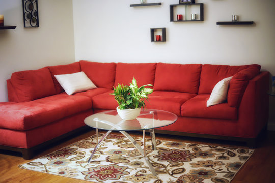 A green house plant on a glass table in a living room with a red sectional