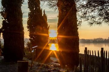 Papiers peints Marron soleil levant et cyprès