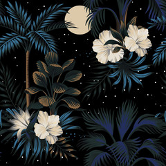 Tropical vintage night landscape, dark palm trees, hibiscus flower, palm leaves, stars and moon floral seamless pattern black background. Exotic jungle wallpaper.